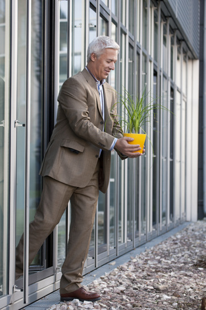 grays: Putting a plant into the sunlight