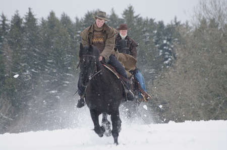 wintery: Riding horses in Winter