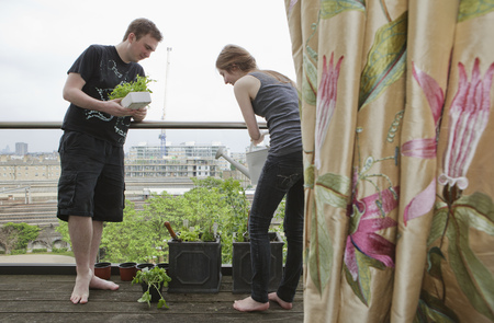 planted: Man and woman planting up flower pots LANG_EVOIMAGES