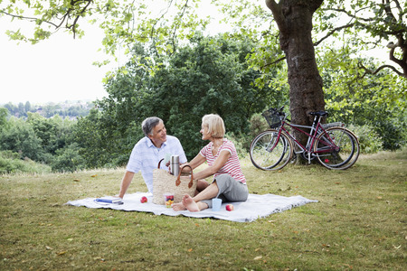 truelove: Mature couple unpacking picnic basket