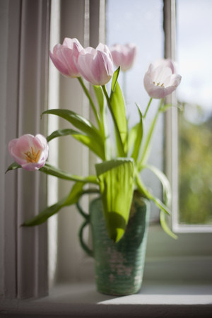 flowered: Flowers in vases and an English Garden