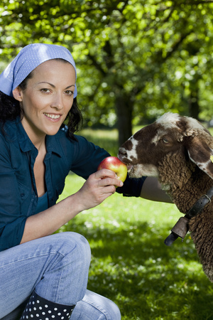 Woman feeding sheep, happy