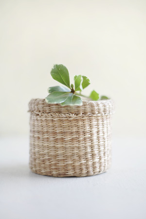 uncomplicated: Small basket with a leaf on the top
