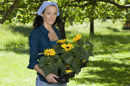 Woman with sunflowers in garden