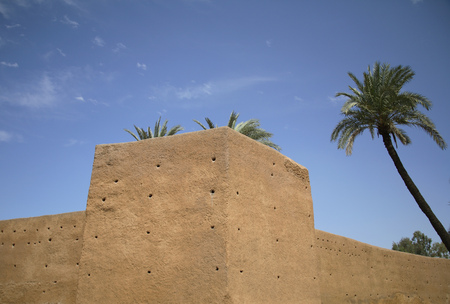 histories: Old city walls and palm trees LANG_EVOIMAGES