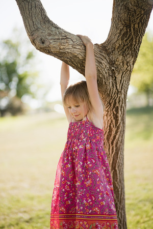 Young girl hanging from tree branch