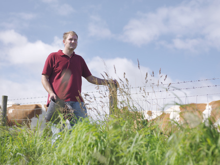 Farmer with guernsey calves LANG_EVOIMAGES