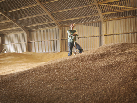 ceased: Farmer in grain store