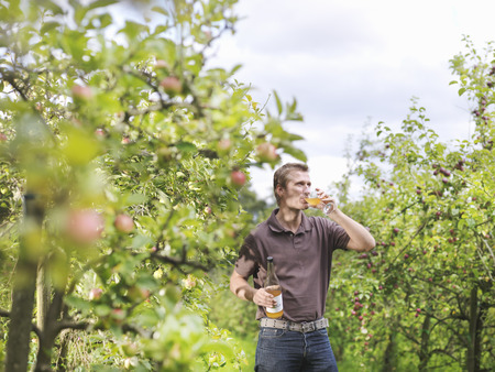 sipping: Farmer drinking cider in orchard