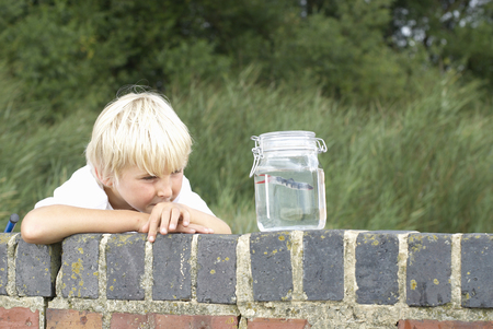 peep: Young boy looking at fish in a jar