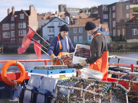 Fishermen with crabs and lobster pots