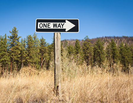 single word: One Way sign