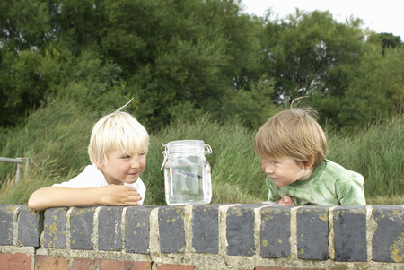 omnivore: Two young boys looking at fish in a jar