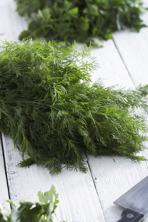 Fresh dill lying on a table