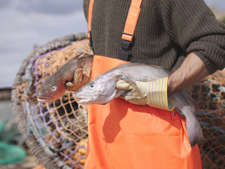 Fisherman holding fish in harbour