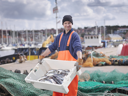 safe water: Fisherman with box of fish in harbour