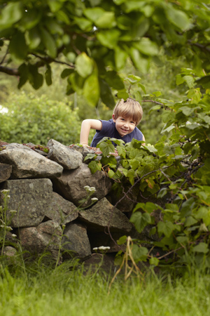 climbed: Young boy climbing stone wall in orchard LANG_EVOIMAGES