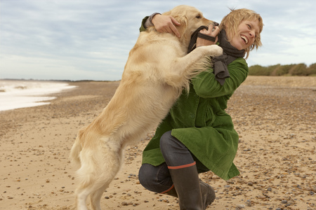 whimsy: Woman training,playing with dog,beach