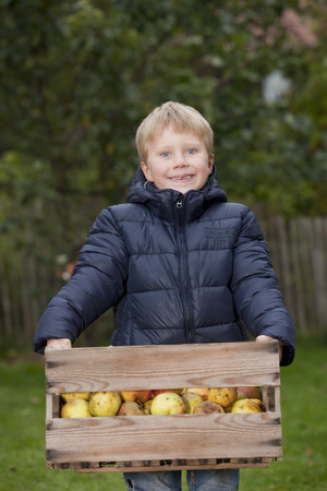 personas reunidas: Chico con caja de manzanas