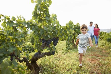 girl in full growth: Family in vineyard