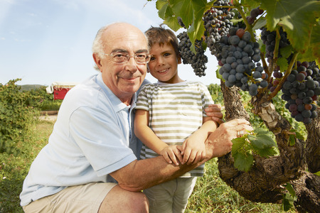 grampa: Grandfather and child looking at grapes