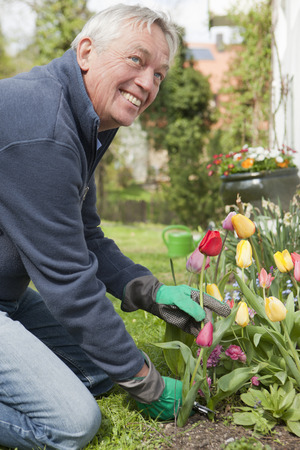 Older man cutting flowers in backyard LANG_EVOIMAGES