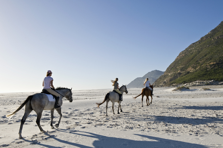 pursuing: 3 people riding horses on the beach