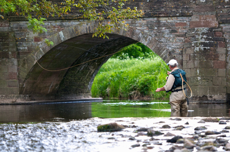 Fly fisherman casting a line in river LANG_EVOIMAGES