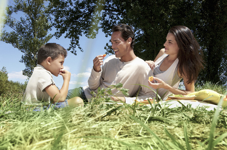 poppa: Family having a picnic