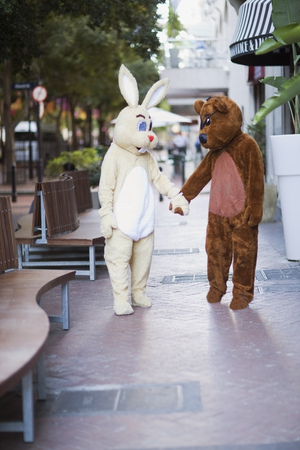 omnivore: Bunny and bear going along the street