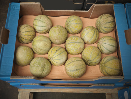 stockmarket: Close up of box of melons