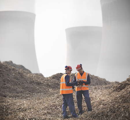 mined: Workers with willow biomass fuel