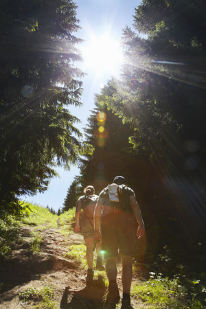 ascends: Hikers walking uphill in forest