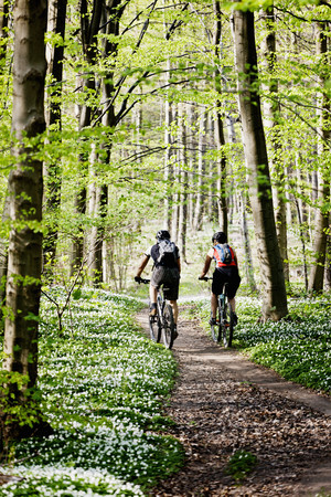 defended: Couple mountain biking together