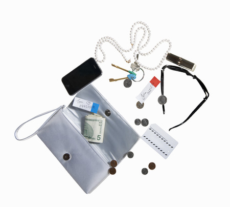 overflows: Purse with cell phone,money,jewelry LANG_EVOIMAGES