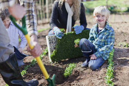 seeding: Family planting in garden together