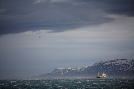 stormy waters: Ship sailing on coast of Iceland