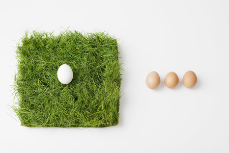 yielded: Eggs with patch of grass