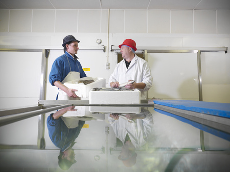 accomplishes: Workers holding fresh fish in plant