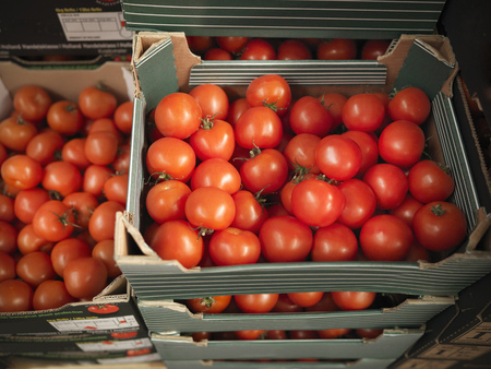 commodities: Close up of boxes of tomatoes