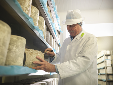 prideful: Worker checking blue cheese in factory LANG_EVOIMAGES