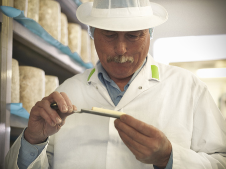 Worker checking blue cheese in factory LANG_EVOIMAGES