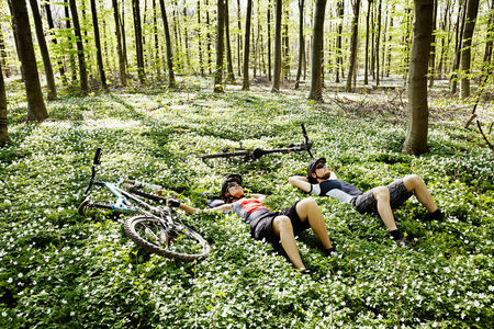 ceasing: Mountain bikers relaxing in forest