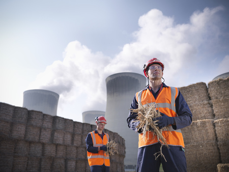 2 50: Workers with elephant grass biomass fuel
