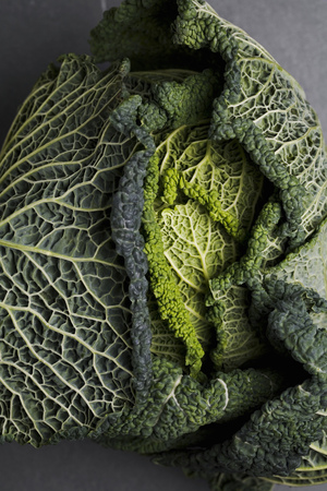 leafed: Close up of head of cabbage