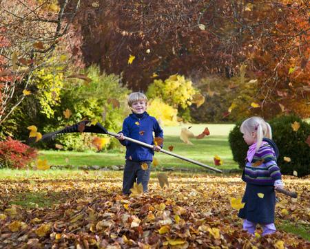 Children raking fall leaves