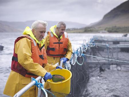 seventy: Worker feeding fish in farm