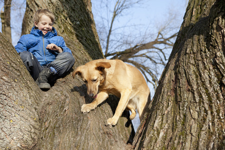 Boy and dog climbing tree together