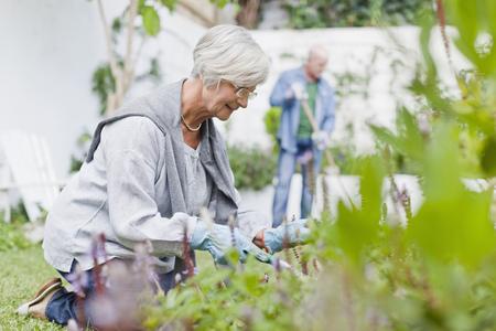 agachado: Mayor pareja de jardinería en el patio trasero