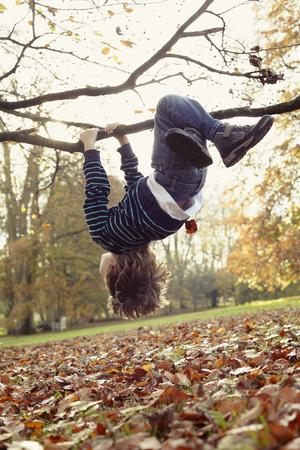 ahorcada: Boy playing on tree outdoors
